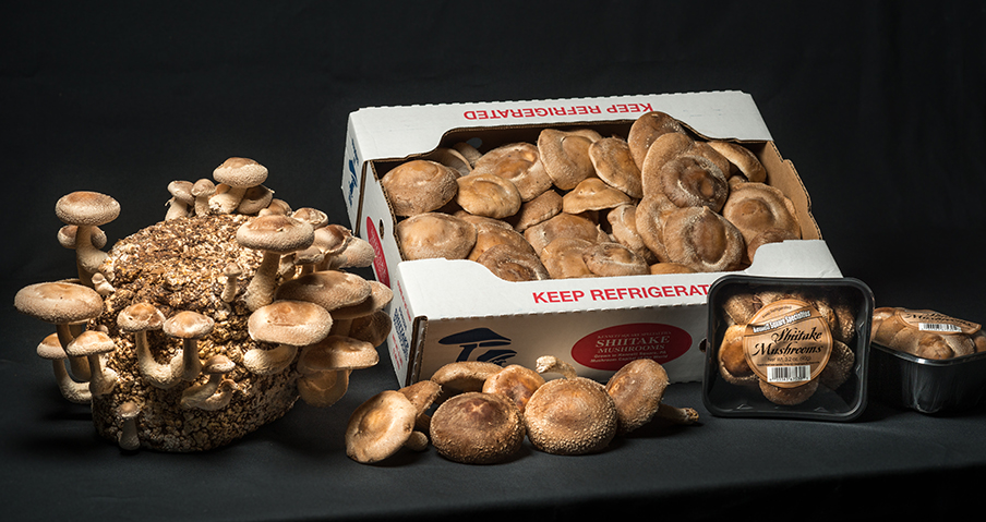 Packages of Shiitake Mushrooms
